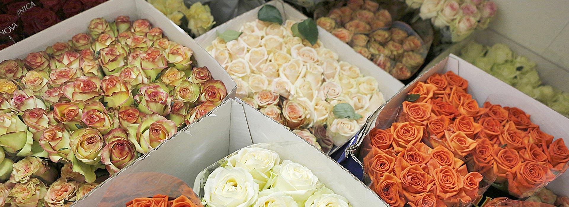 hero-bloemenwinkel-bloemenberg-02